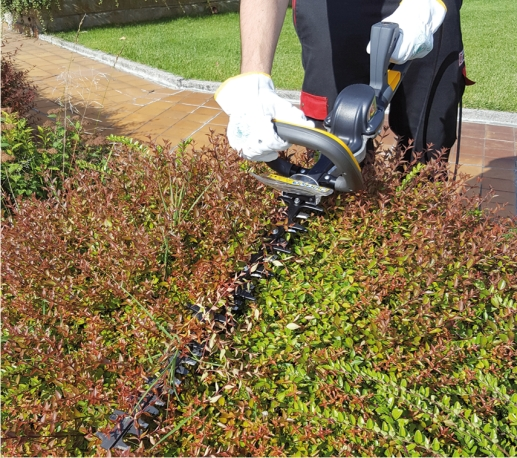 Zanon RAPTOR 600 Electronic hedge trimmer